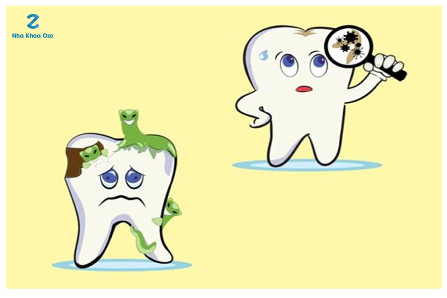 Bổ sung fluor, thành phần có trong kem đánh răng