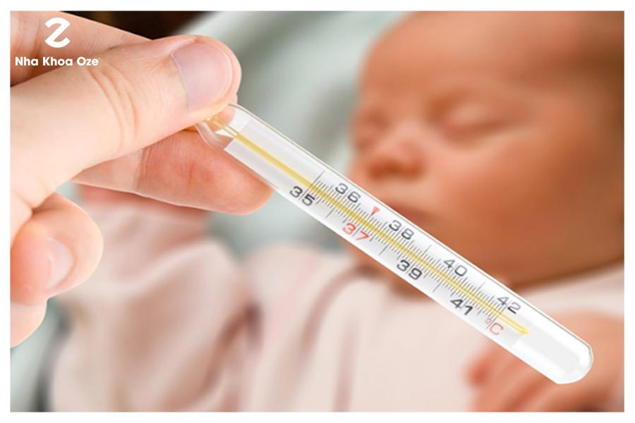 Các loại hàm trainer hiện nay