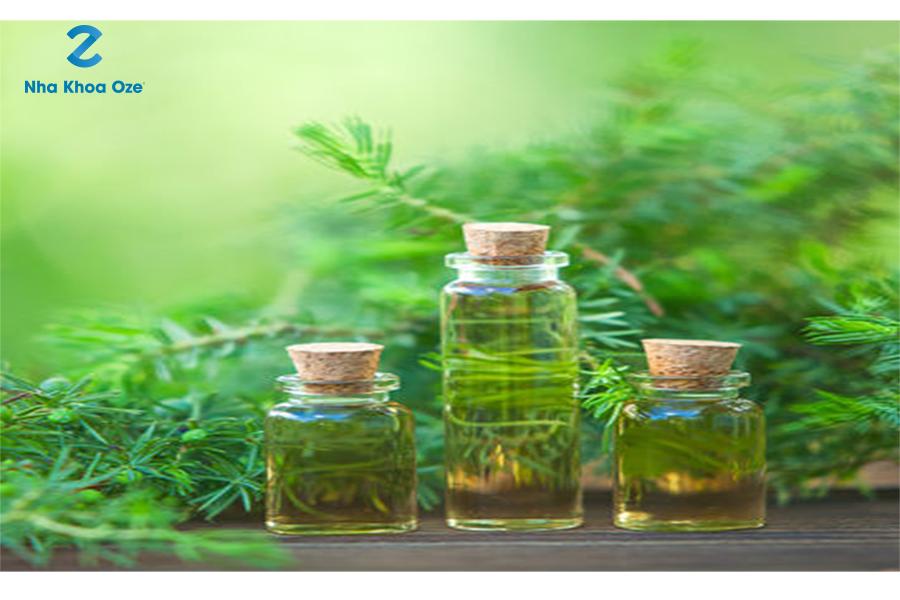 Tinh dầu cây trà giúp khử sạch vi khuẩn đem lại hơi thở thơm mát