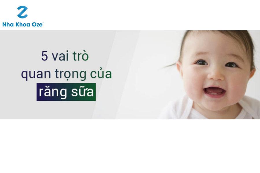 Răng sữa có những tác dụng gì đối với trẻ em