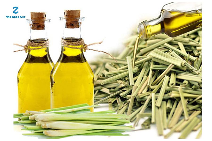 Bạn cũng có thể sử dụng tinh dầu sả để trị viêm lợi